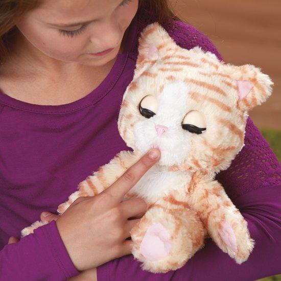 speelgoed kat knuffel